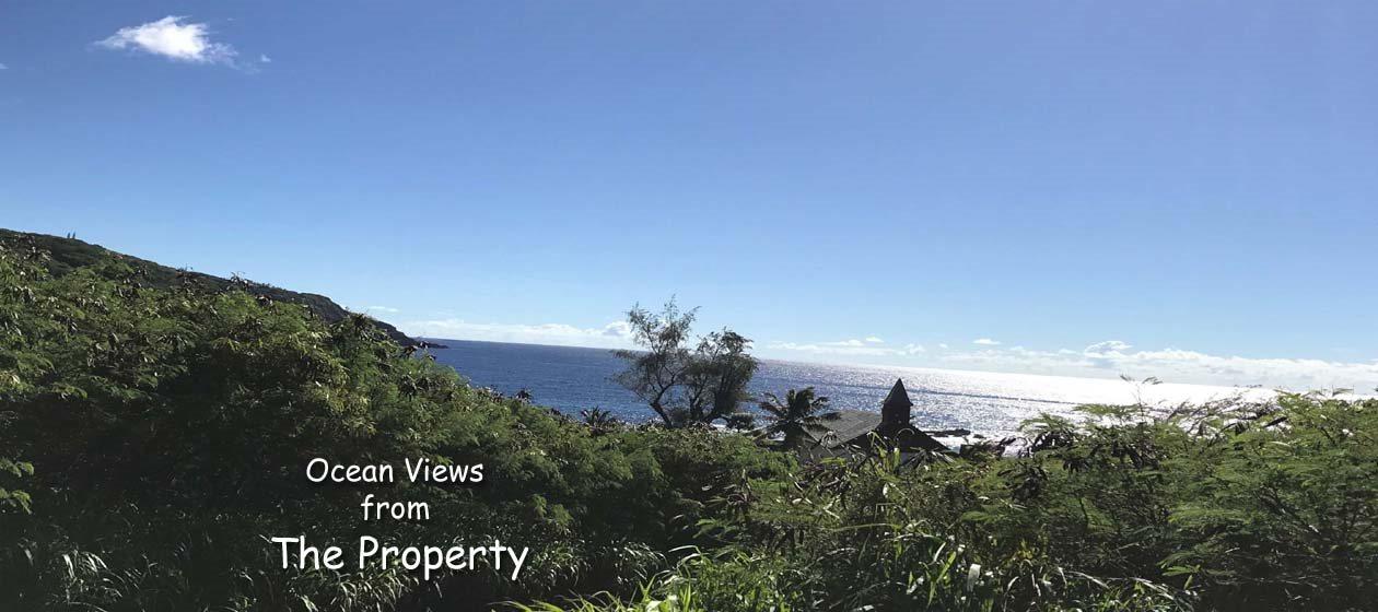 35170 Piilani Hwy  Hana, Hi 96713 vacant land - photo 3 of 15