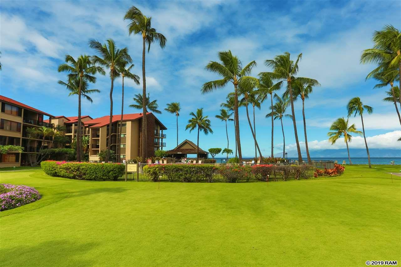 Papakea Resort I II condo # G-102, Lahaina, Hawaii - photo 1 of 24
