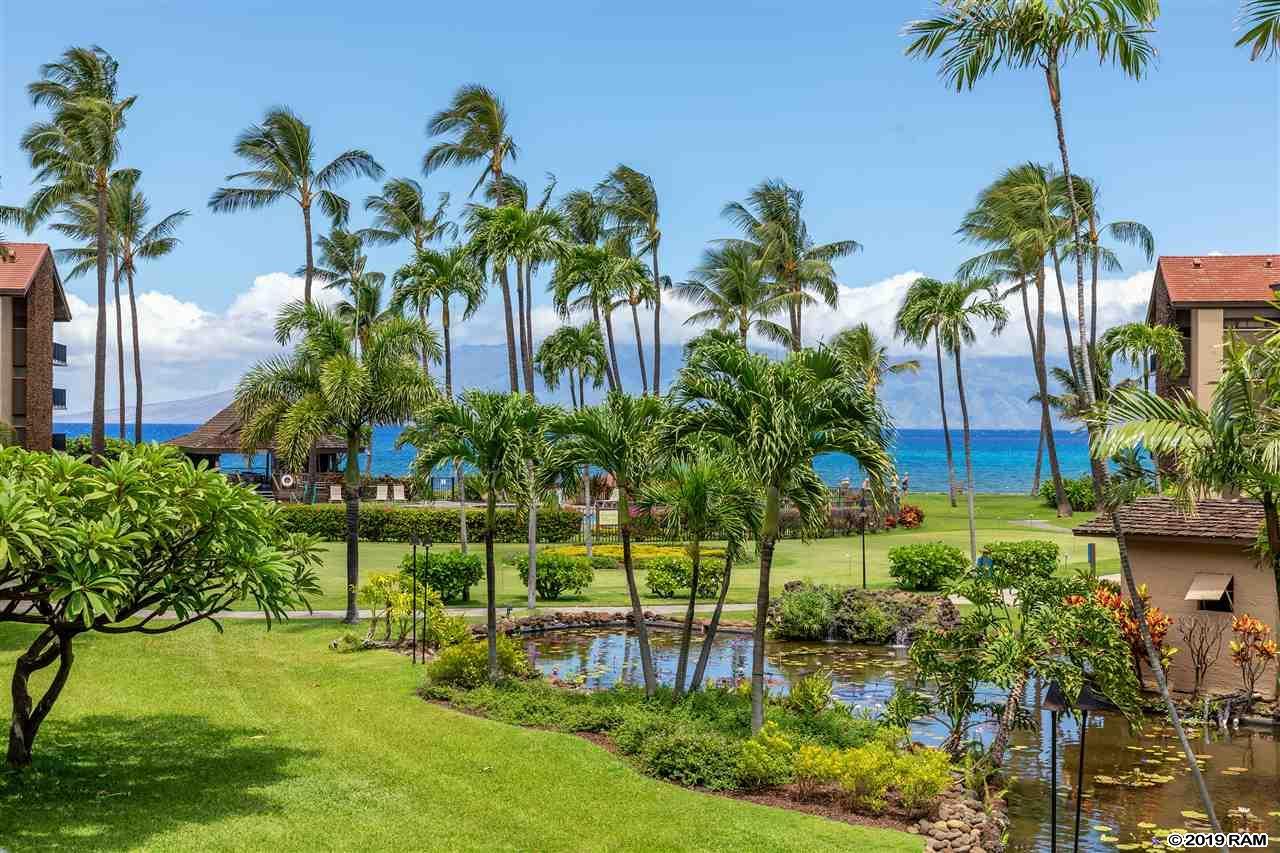 Papakea Resort I II condo # G-102, Lahaina, Hawaii - photo 23 of 24