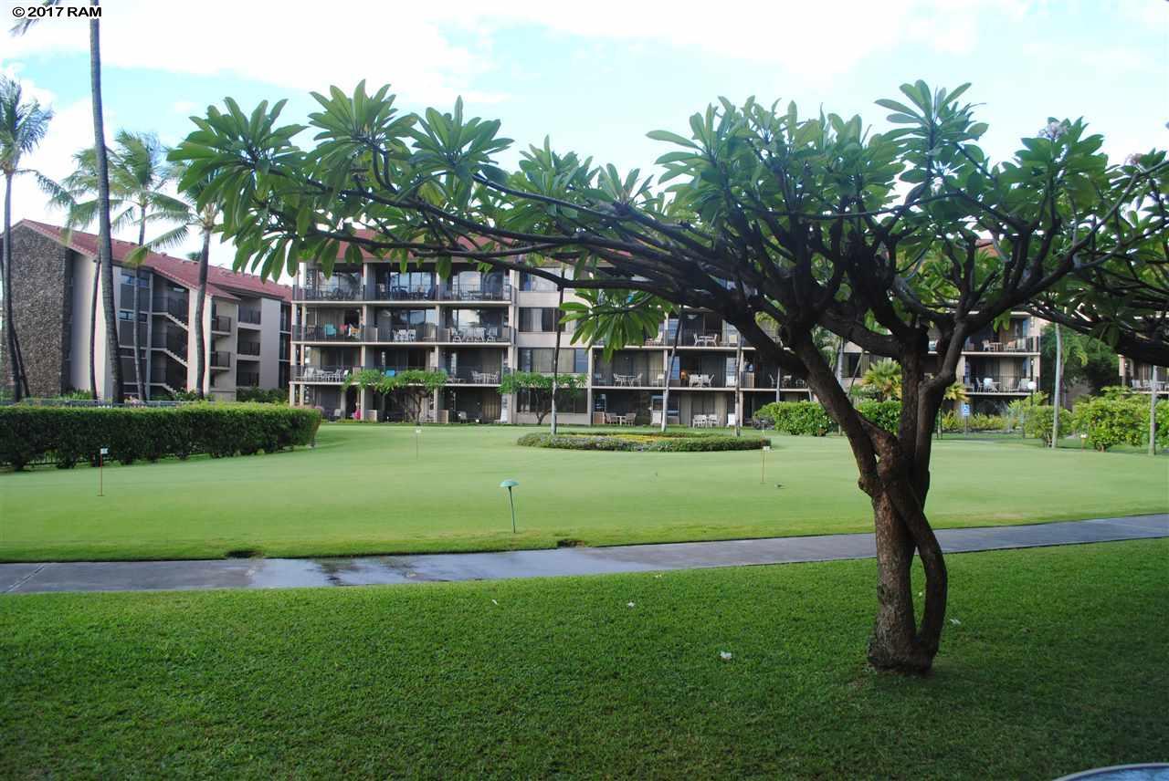 Papakea Resort I II condo # K105, Lahaina, Hawaii - photo 20 of 23