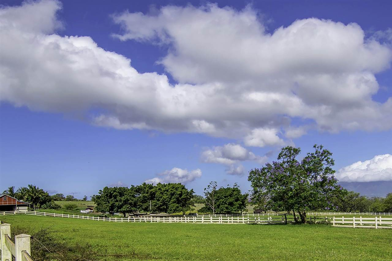 3651  Omaopio Rd Omaopio - Lower Kula, Kula/Ulupalakua/Kanaio home - photo 4 of 18