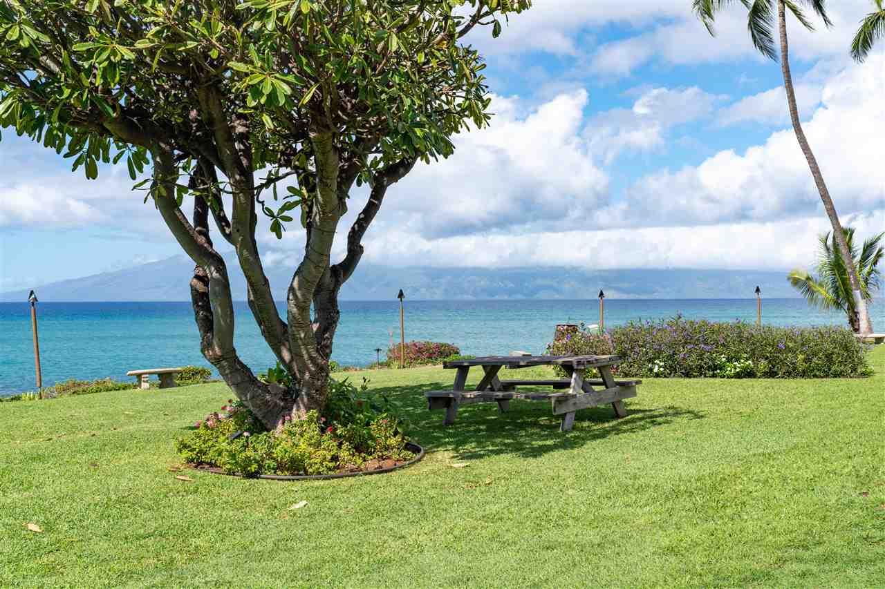 Polynesian Shores condo # 211, Lahaina, Hawaii - photo 25 of 28