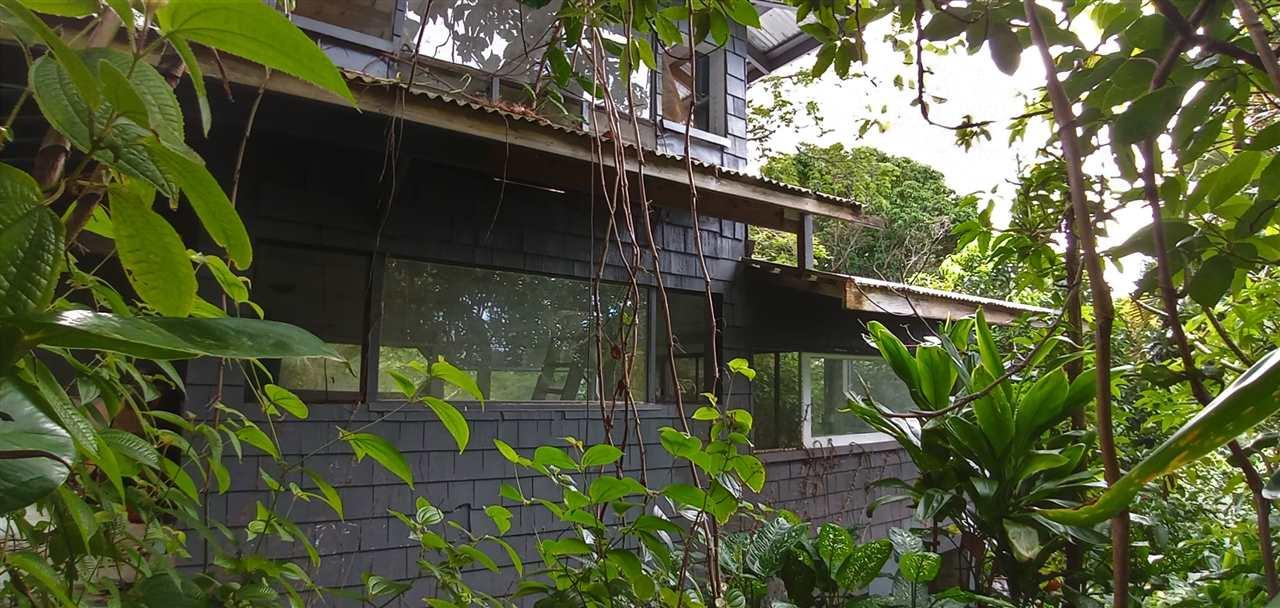 400  Honokala Stream Rd , Haiku home - photo 1 of 29