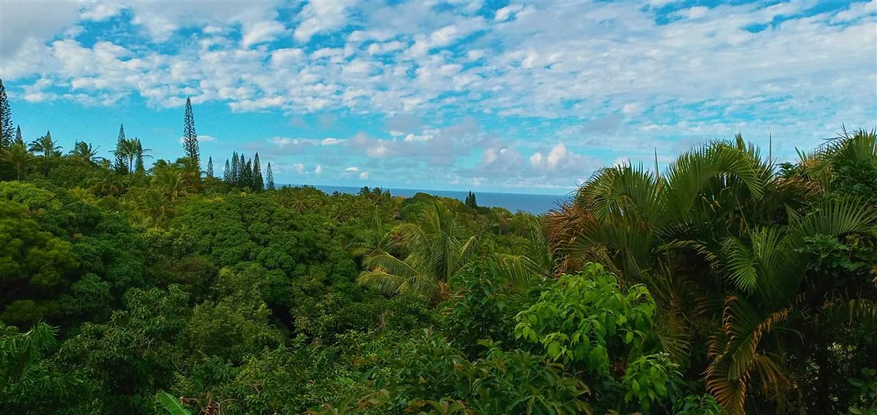 400  Honokala Stream Rd , Haiku home - photo 2 of 29