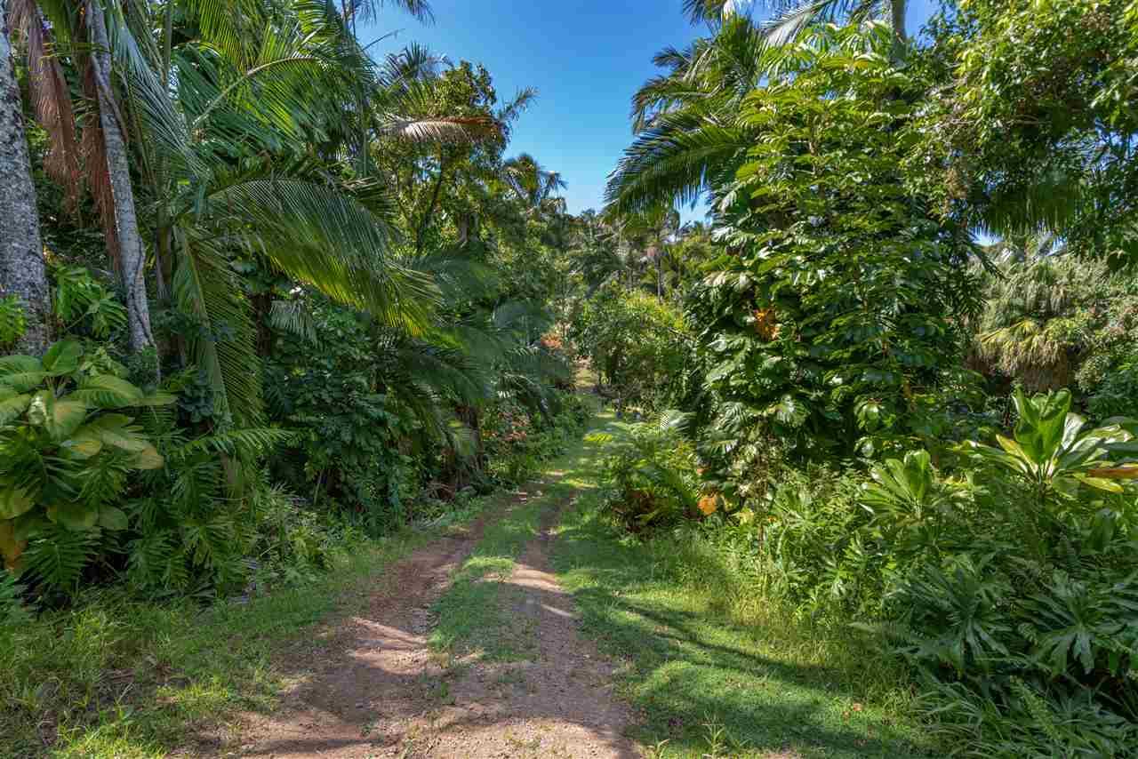 400  Honokala Stream Rd , Haiku home - photo 13 of 29