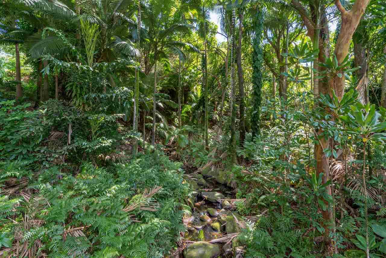 400  Honokala Stream Rd , Haiku home - photo 18 of 29