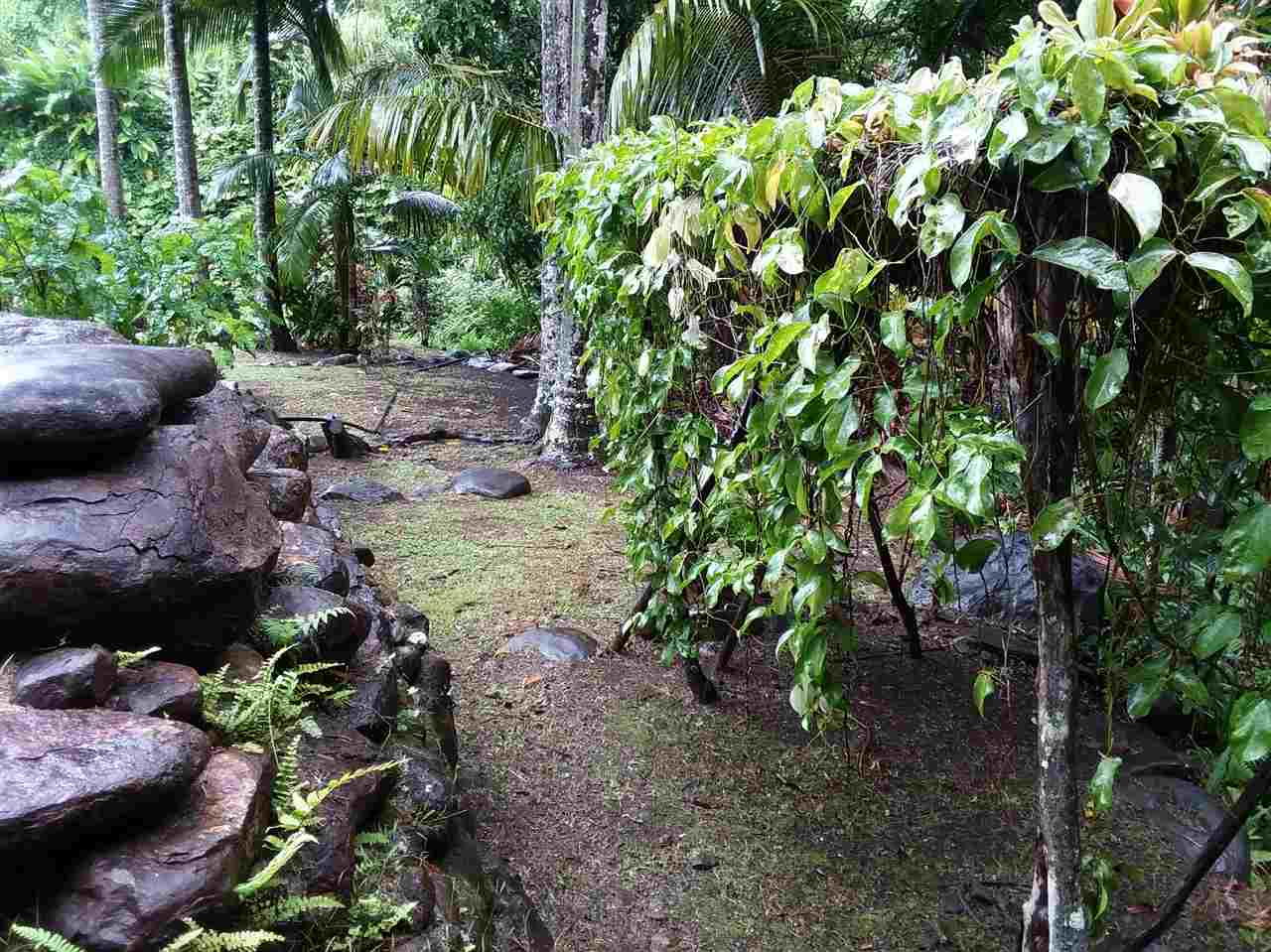 400  Honokala Stream Rd , Haiku home - photo 25 of 29