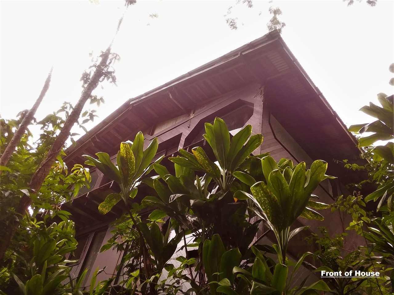 400  Honokala Stream Rd , Haiku home - photo 8 of 29