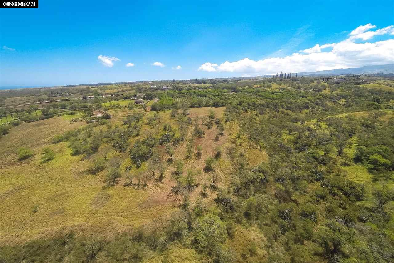 41 Ikena Kai Pl Lot 2 Kula, Hi 96790 vacant land - photo 13 of 25