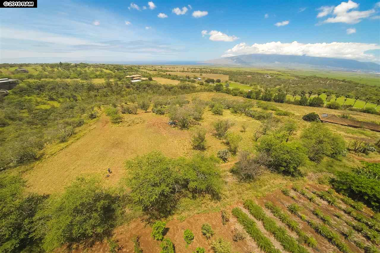 41 Ikena Kai Pl Lot 2 Kula, Hi 96790 vacant land - photo 19 of 25