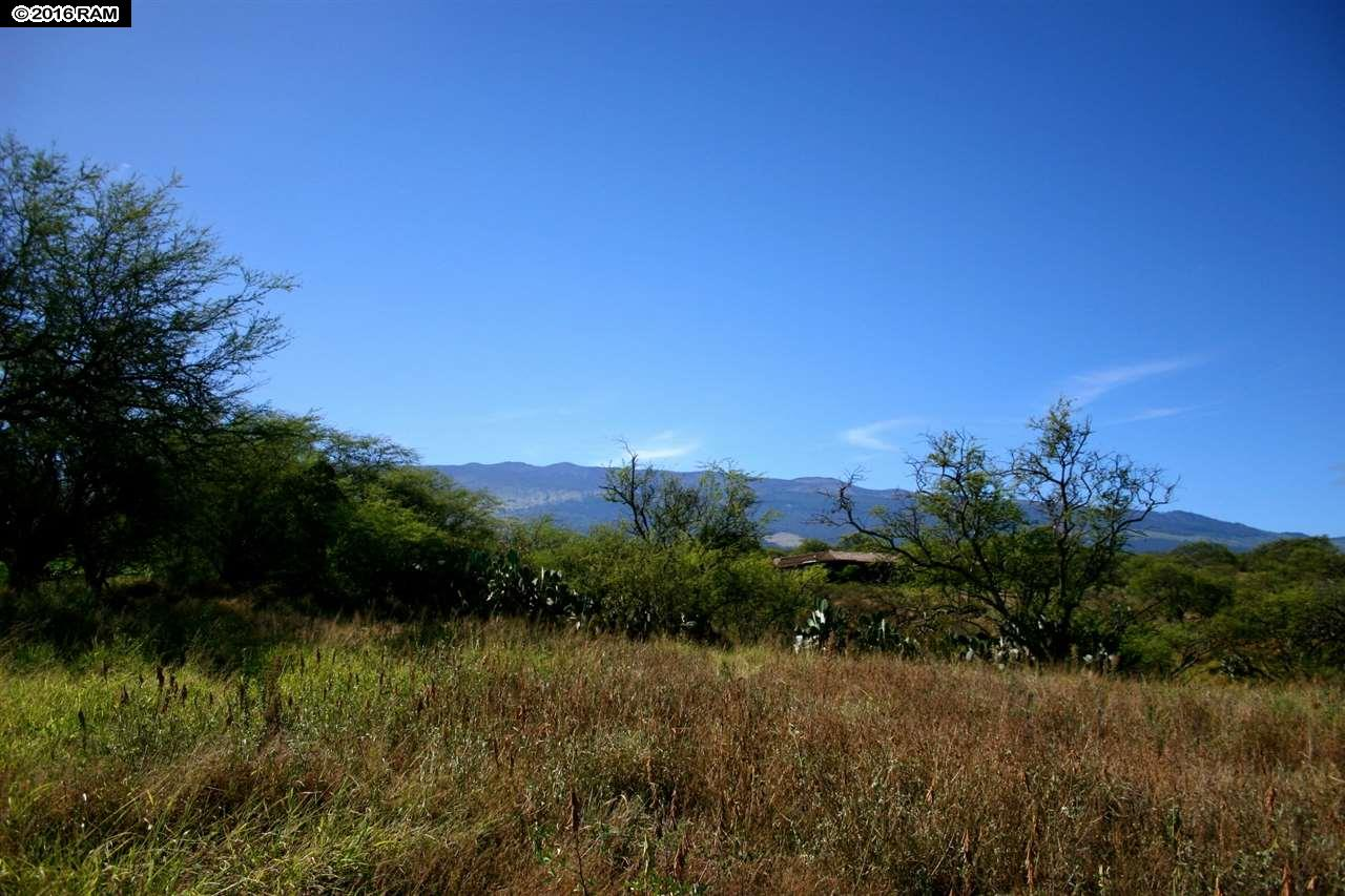 41 Ikena Kai Pl Lot 2 Kula, Hi 96790 vacant land - photo 6 of 25