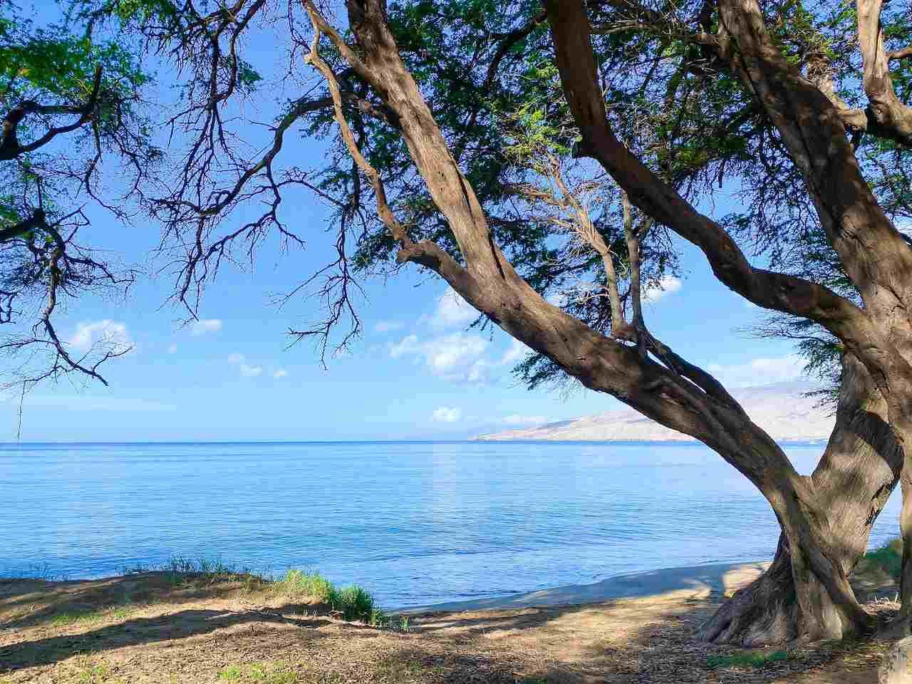 Kai Makani condo # V202, Kihei, Hawaii - photo 3 of 24