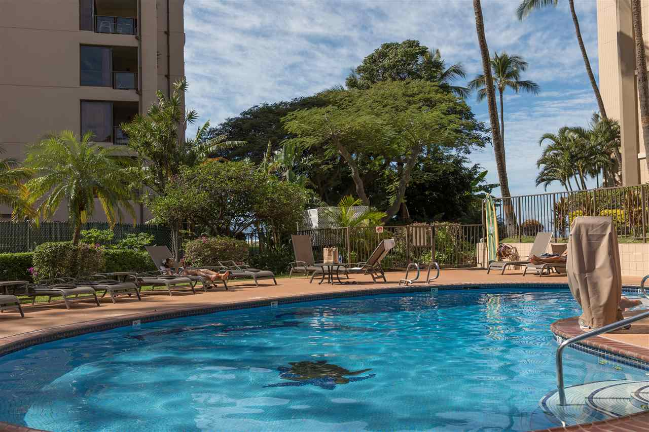 Valley Isle Resort condo # 1001, Lahaina, Hawaii - photo 17 of 23