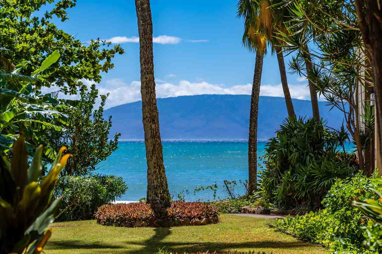 Valley Isle Resort condo # 103B, Lahaina, Hawaii - photo 2 of 30