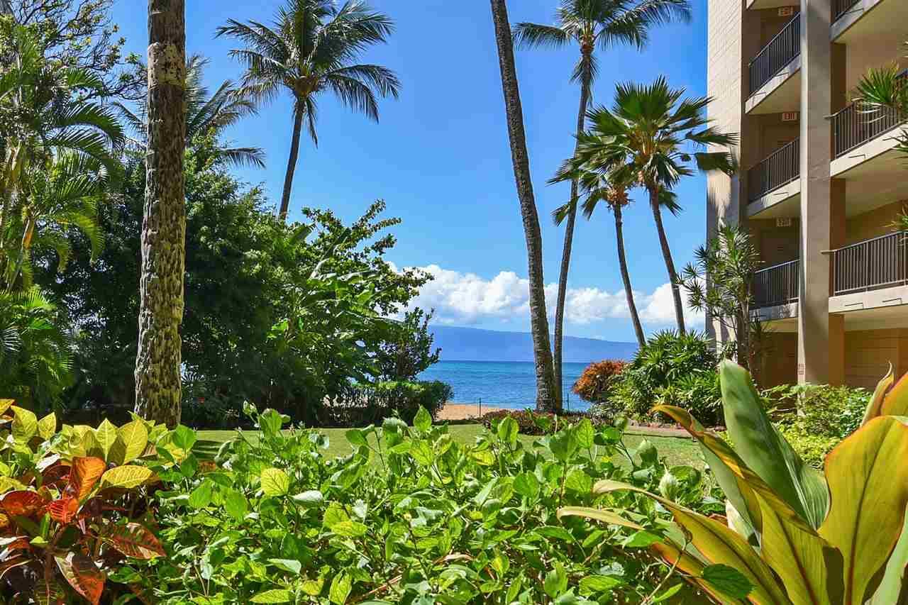 Valley Isle Resort condo # 103B, Lahaina, Hawaii - photo 16 of 30