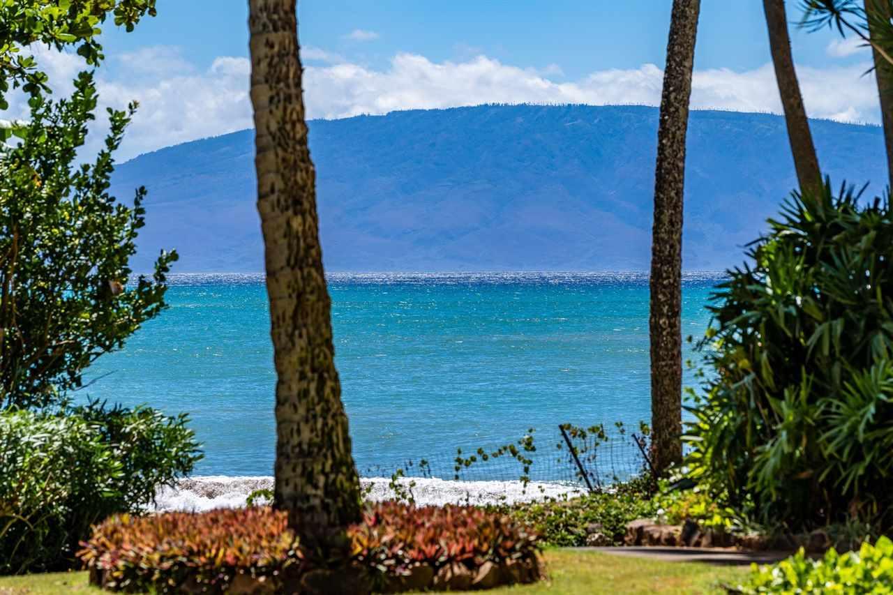 Valley Isle Resort condo # 103B, Lahaina, Hawaii - photo 10 of 30