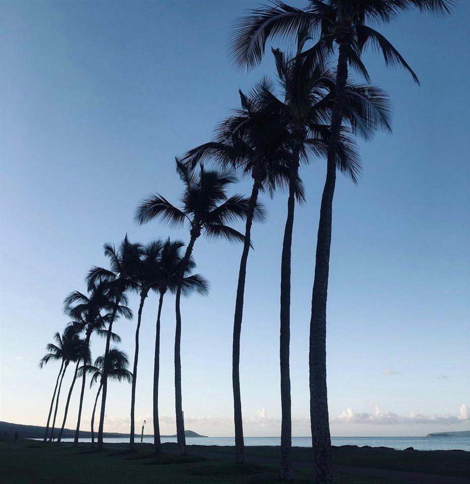 Hale Kanani condo # 1-302, Kihei, Hawaii - photo 27 of 30