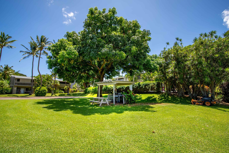 Pohailani Maui condo # 116, Lahaina, Hawaii - photo 19 of 26