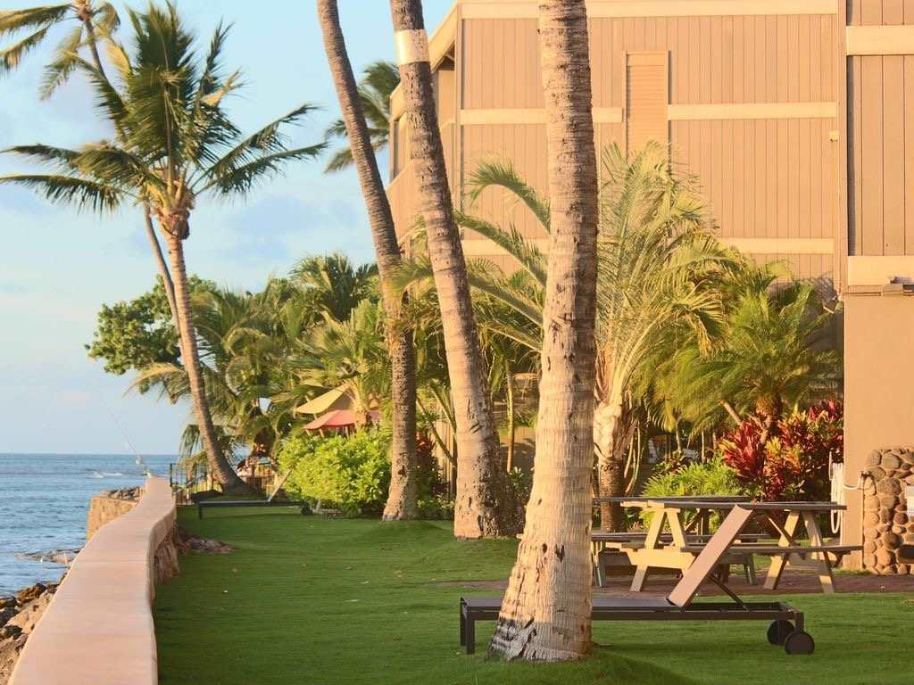 Pohailani Maui condo # 124, Lahaina, Hawaii - photo 22 of 29