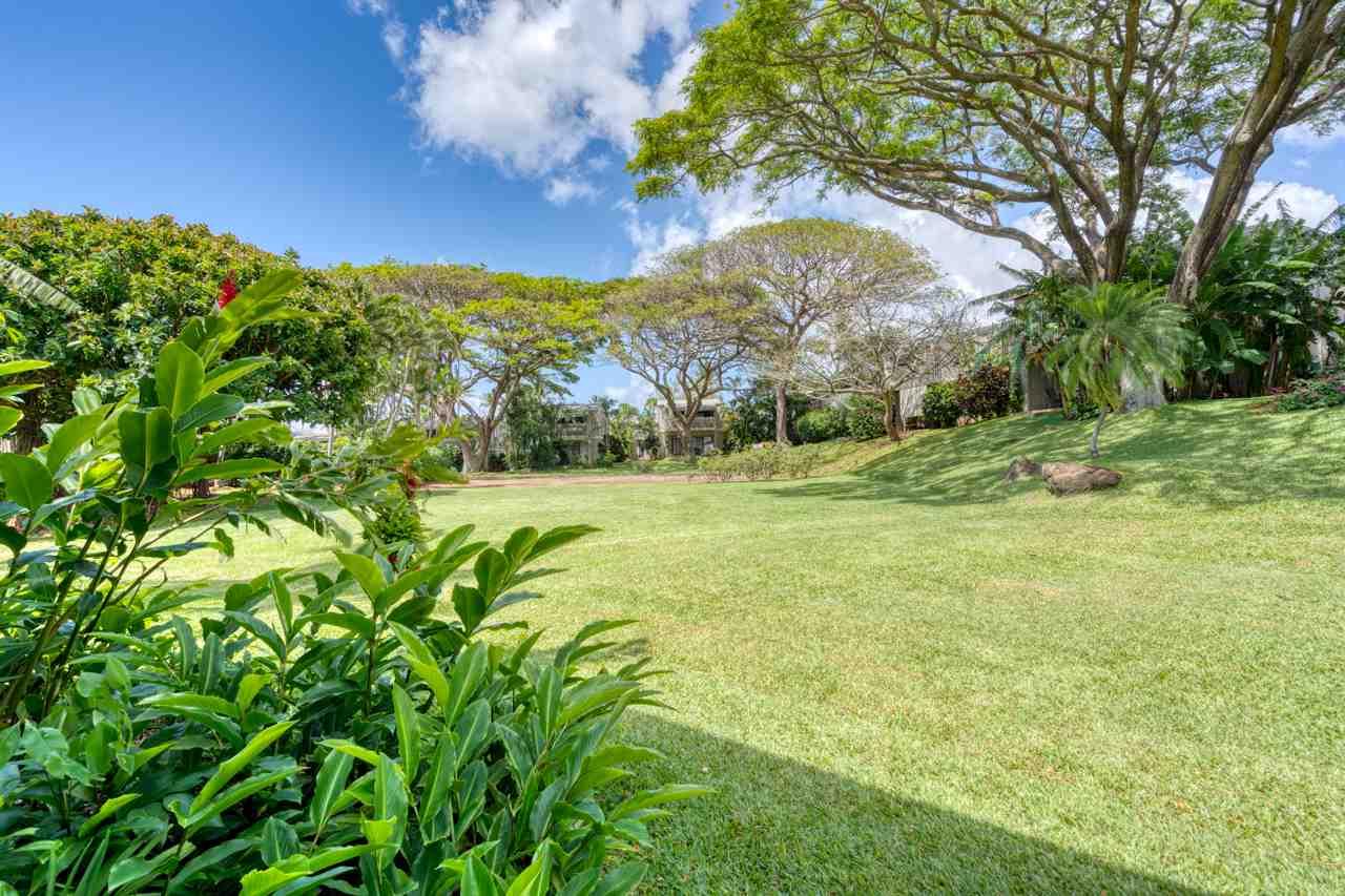 Pohailani Maui condo # 124, Lahaina, Hawaii - photo 6 of 29
