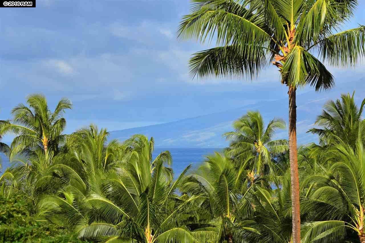 Maui Kaanapali Villas condo # A511, Lahaina, Hawaii - photo 3 of 24