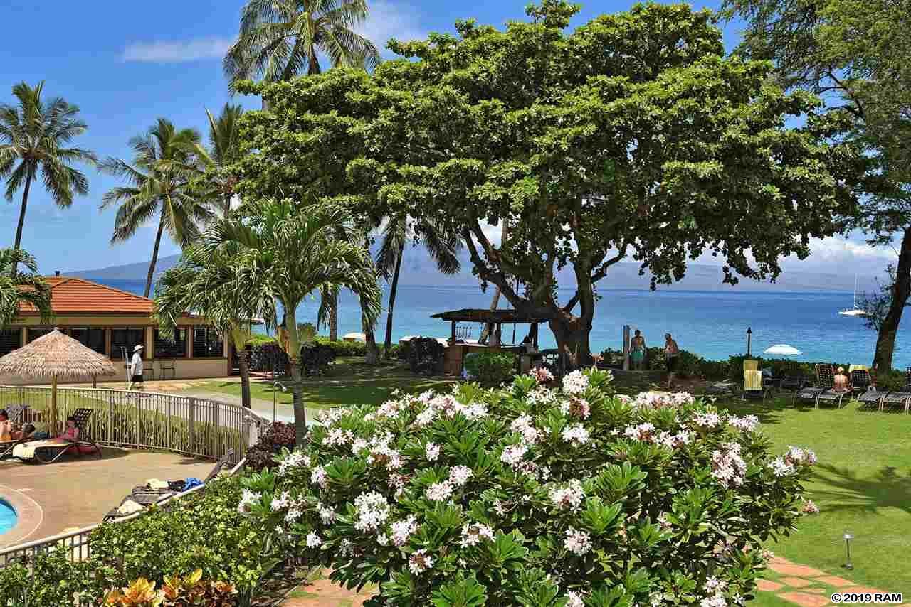 Maui Kaanapali Villas condo # D276, Lahaina, Hawaii - photo 6 of 30