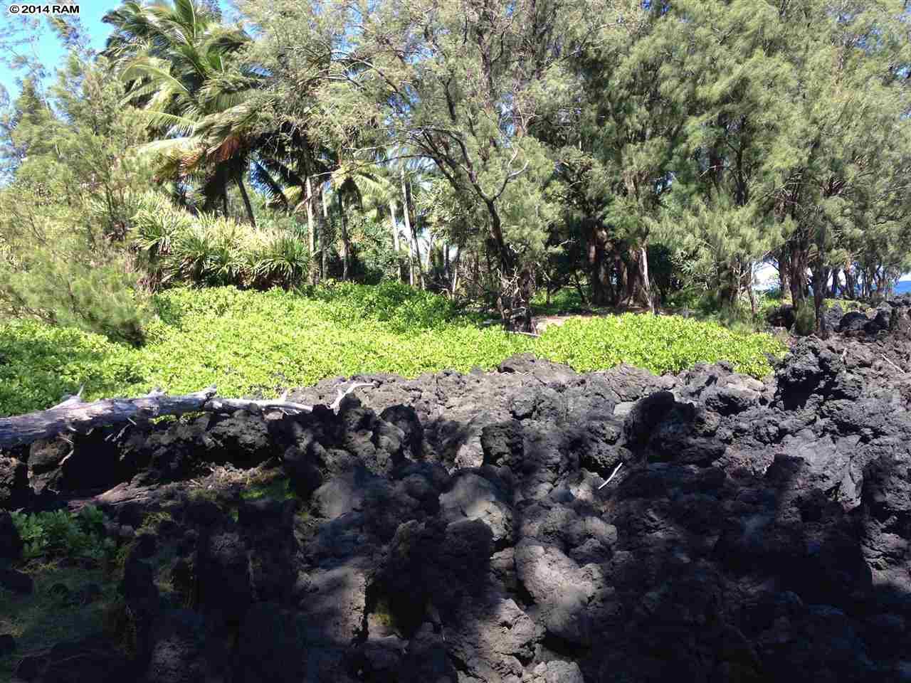 459 Keanae Rd  Hana, Hi 96708 vacant land - photo 6 of 11