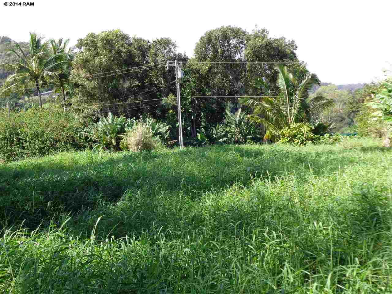 459 Keanae Rd  Hana, Hi 96708 vacant land - photo 9 of 11