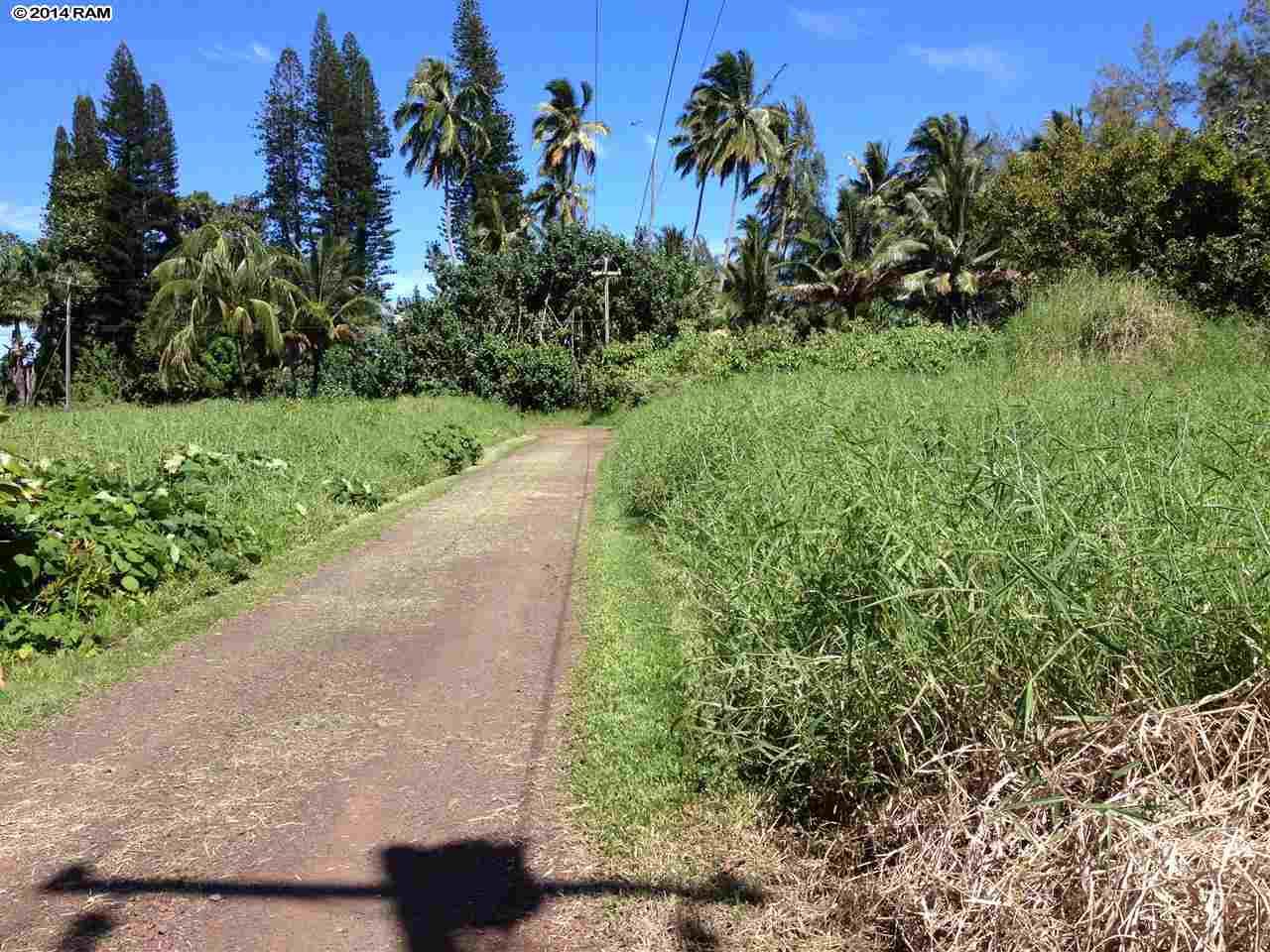 459 Keanae Rd  Hana, Hi 96708 vacant land - photo 10 of 11