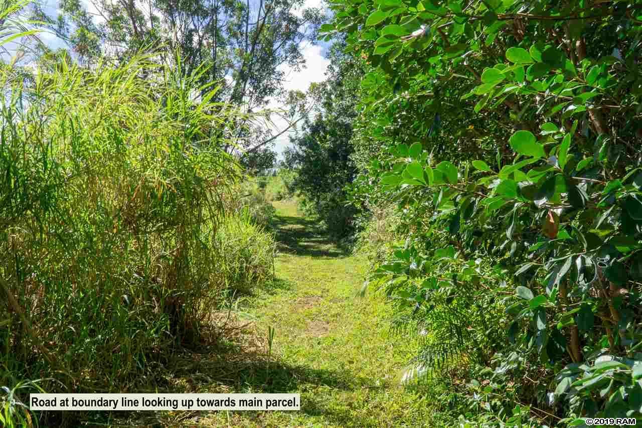471 B Ulumalu Rd B Haiku, Hi 96708-5317 vacant land - photo 15 of 16