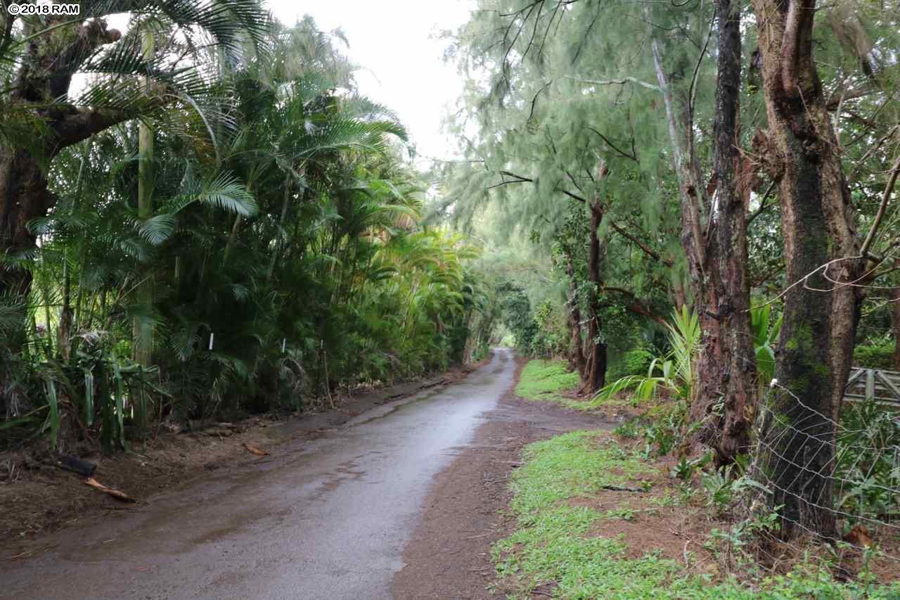 475 B  Kulike Rd Peahi, Haiku home - photo 10 of 17