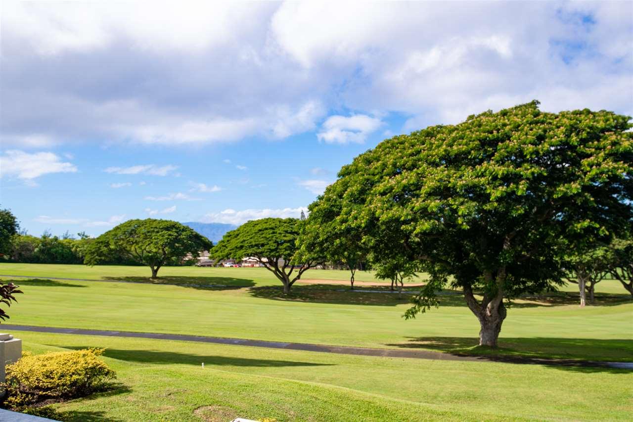 Kapalua Golf Villas condo # 16P5-6, Lahaina, Hawaii - photo 27 of 27