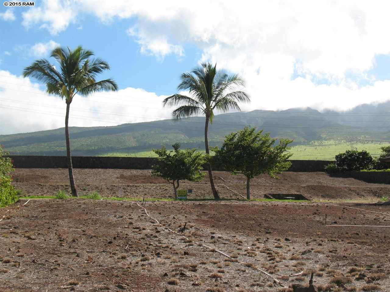 647 Anapuni Loop  Lahaina, Hi 96761 vacant land - photo 7 of 15