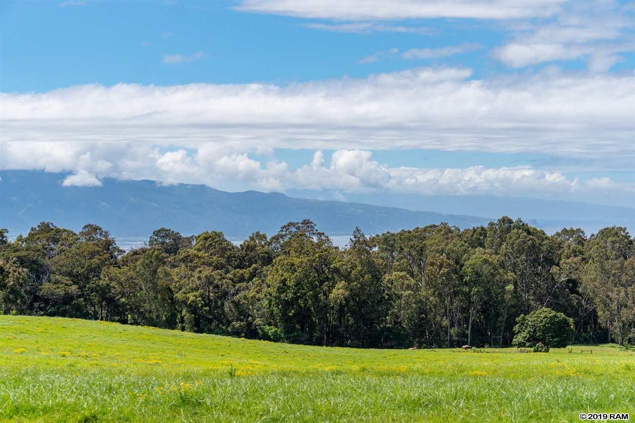 685 Olinda Rd  Makawao, Hi 96768 vacant land - photo 1 of 20