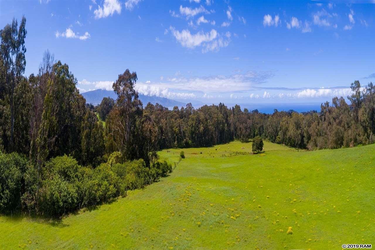 685 Olinda Rd  Makawao, Hi 96768 vacant land - photo 20 of 20