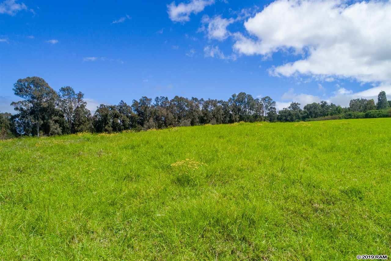 685 Olinda Rd  Makawao, Hi 96768 vacant land - photo 5 of 20