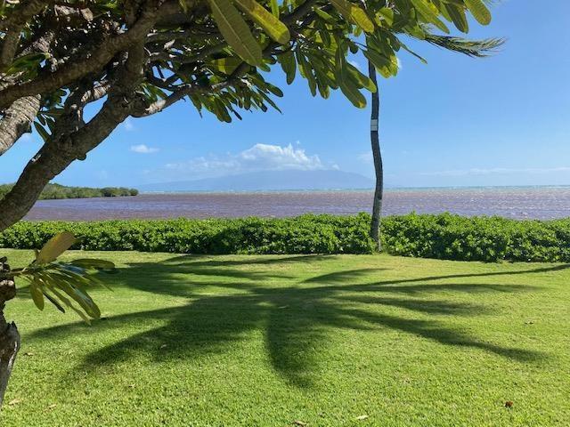 Wavecrest condo # A108, Kaunakakai, Hawaii - photo 13 of 16