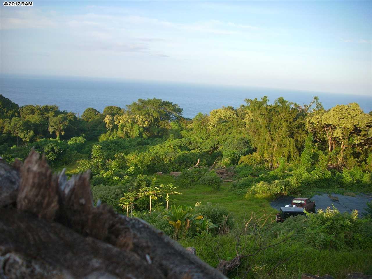 719 Nahiku Rd , Hi 96708 vacant land - photo 1 of 3