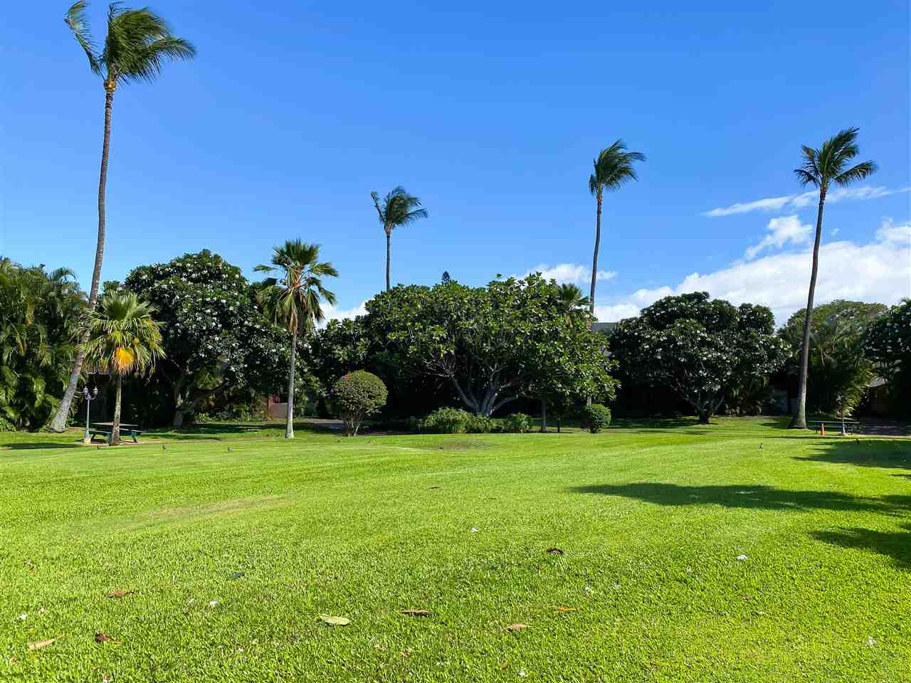 Koa Resort condo # 1B, Kihei, Hawaii - photo 26 of 30