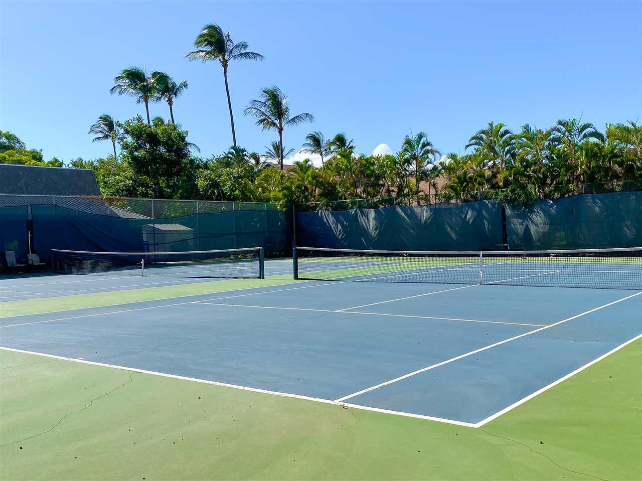 Koa Resort condo # 1B, Kihei, Hawaii - photo 29 of 30