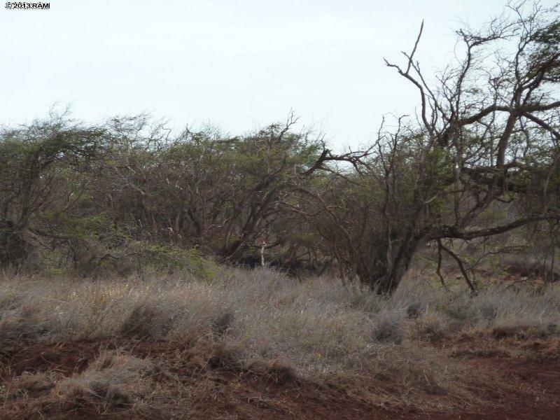 0 Ahiu Rd 137 , Hi 96748 vacant land - photo 6 of 6