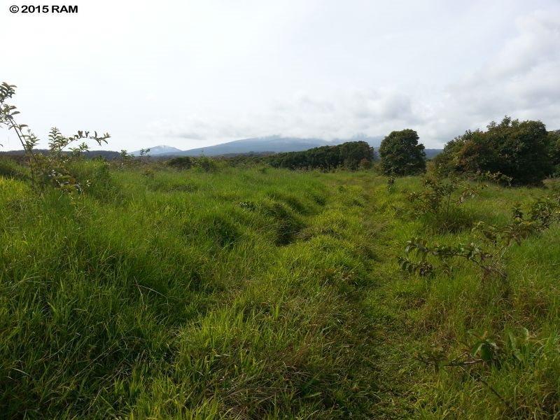 0 Awalau Rd , Hi 96708 vacant land - photo 3 of 4