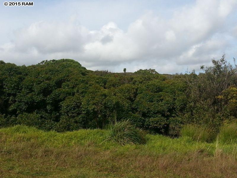 0 Awalau Rd , Hi 96708 vacant land - photo 4 of 4