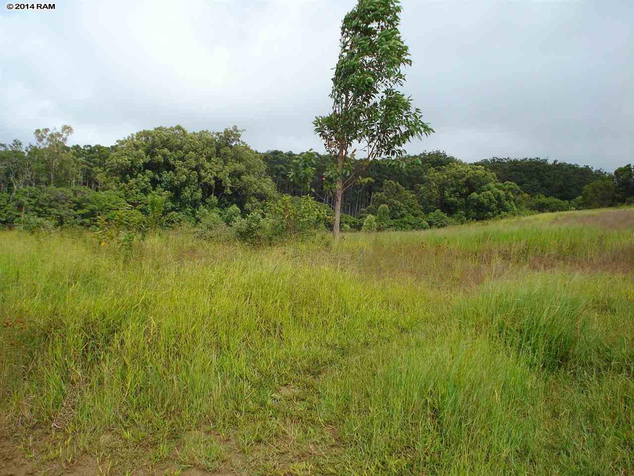 0 Awalau Rd , Hi 96708 vacant land - photo 5 of 5