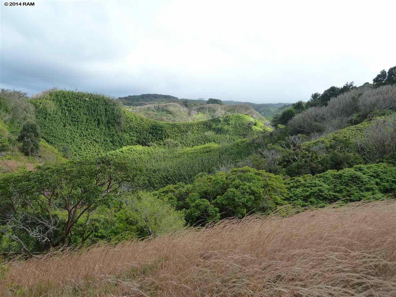 0 Burns Rd , Hi 96708 vacant land - photo 3 of 18