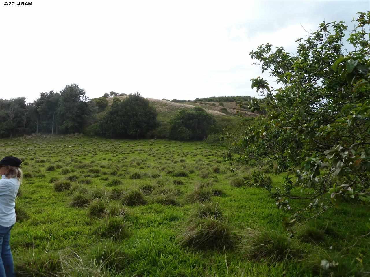 0 Burns Rd , Hi 96708 vacant land - photo 6 of 18