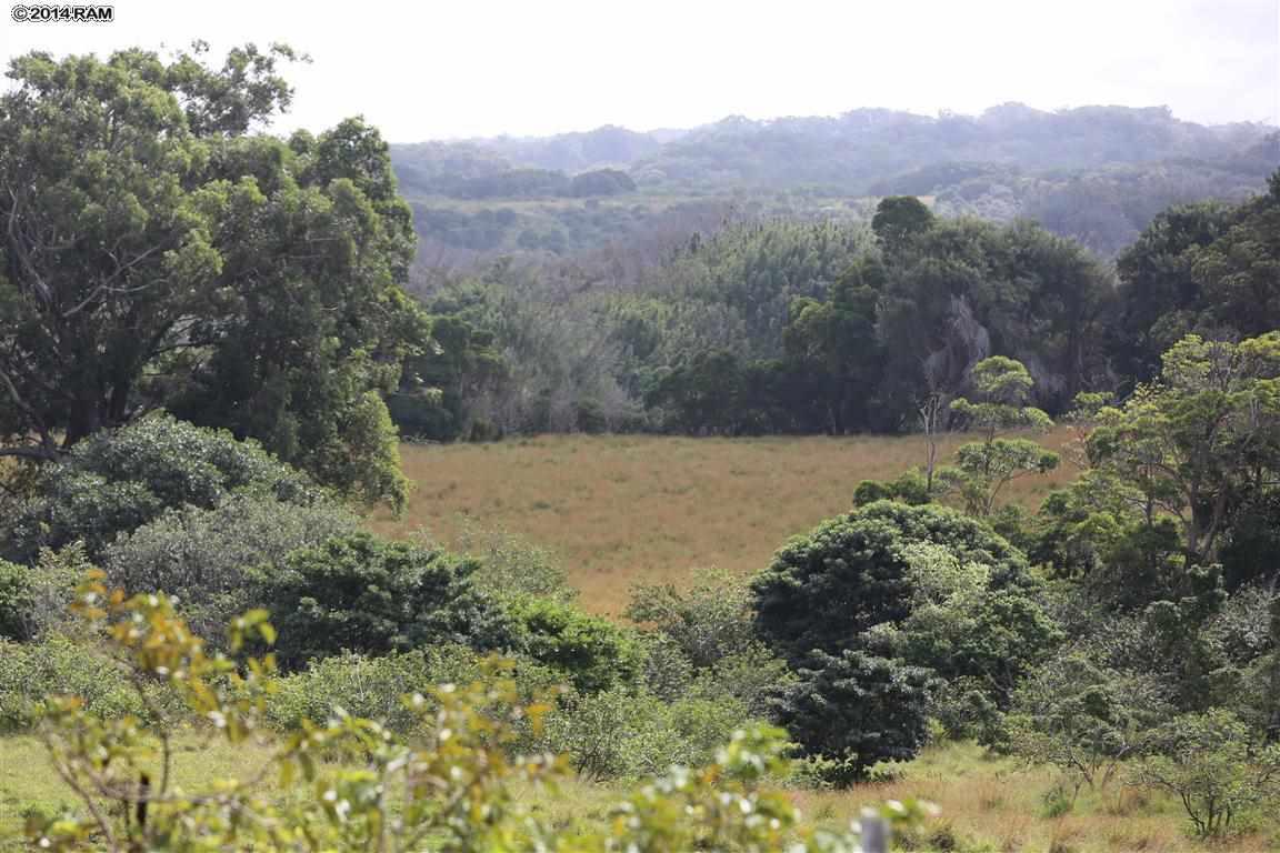 0 Burns Rd , Hi 96708 vacant land - photo 7 of 18