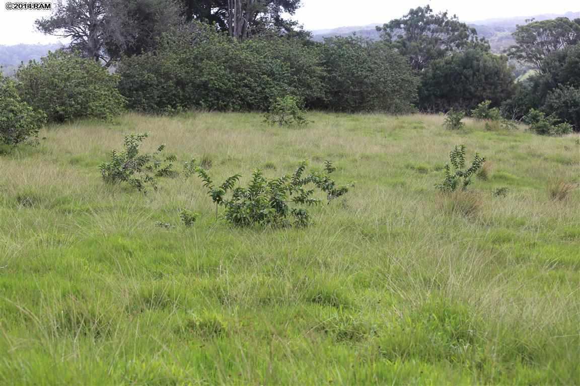0 Burns Rd , Hi 96708 vacant land - photo 10 of 18