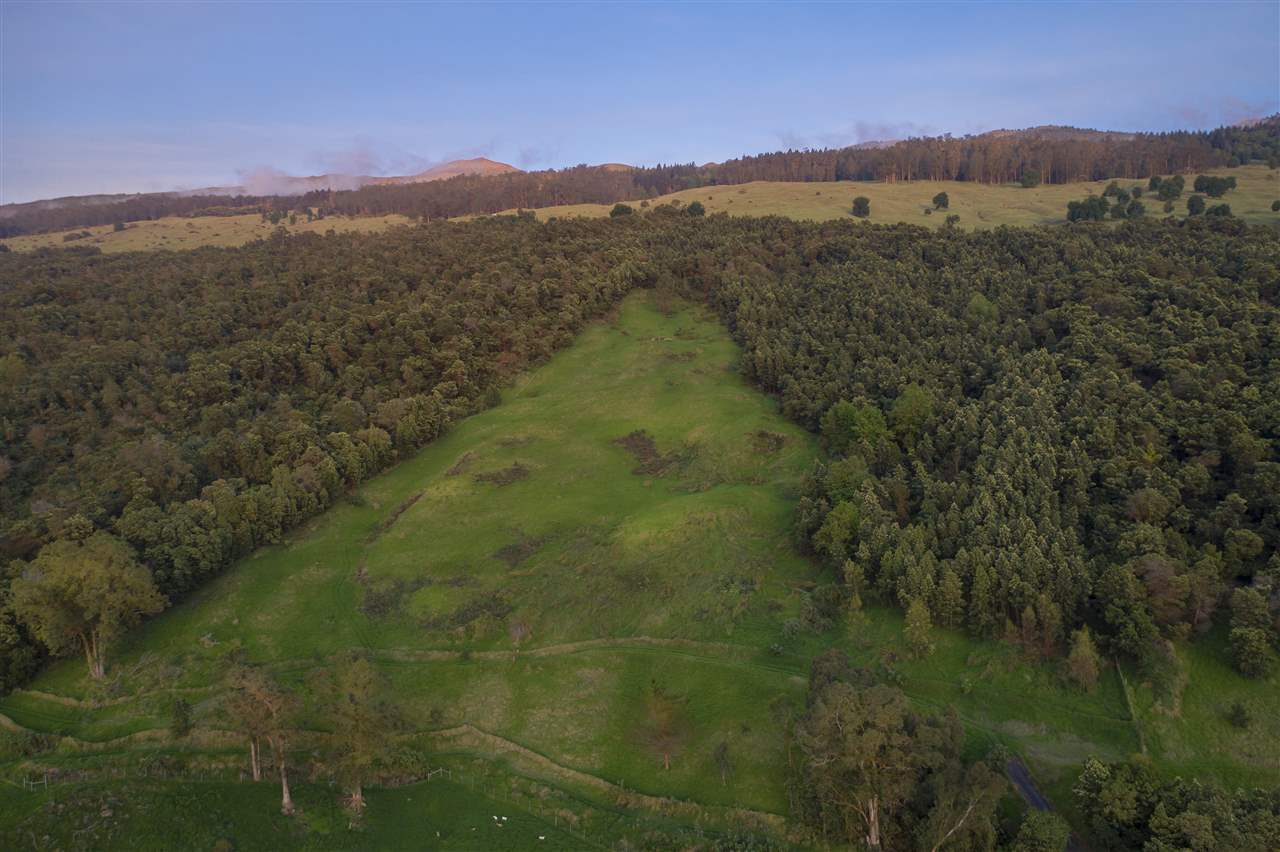 0 Cross Rd Kula, Hi 96790 vacant land - photo 17 of 30