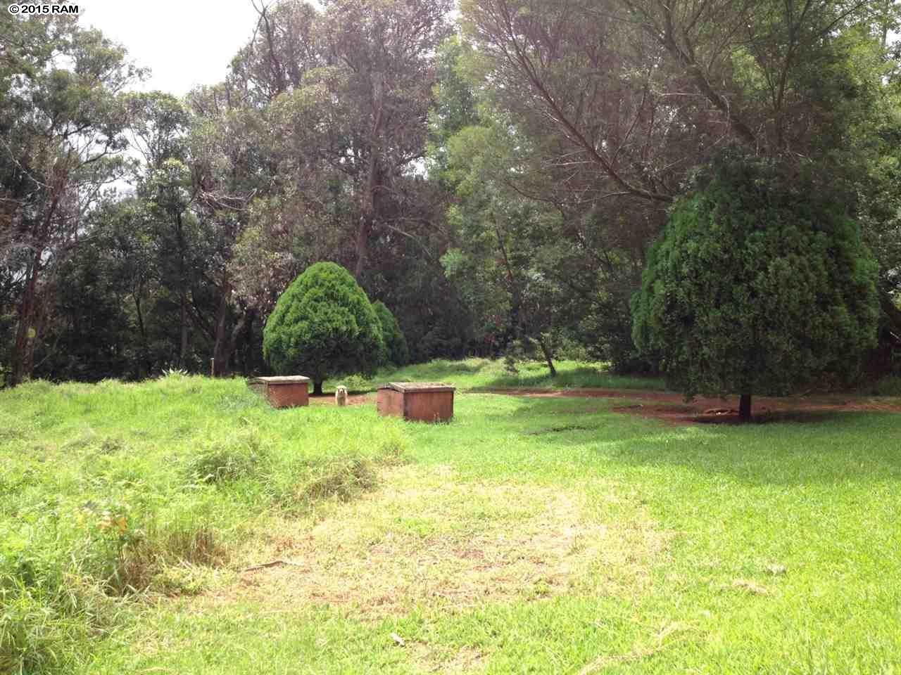 Ehu Rd Ehu Rd, Makawao/Olinda/Haliimaile home - photo 15 of 21